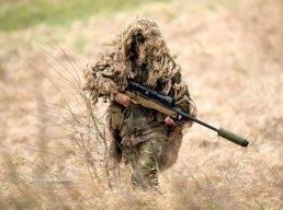 pips.hunter
